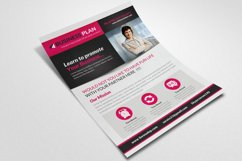 Business Solutions Consultant Flyer Product Image 3
