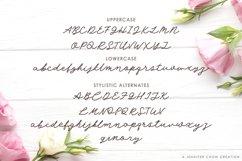 Angel Rose   An Elegant Monoline Font Product Image 2