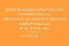 Web Font Mango Pie Script Font Product Image 5