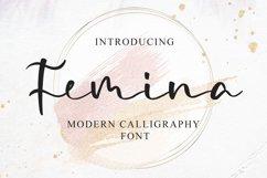 Femina - a Modern Calligraphy Font Product Image 1