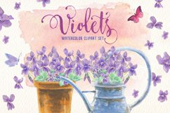 violets flowers watercolor clip art set Product Image 6