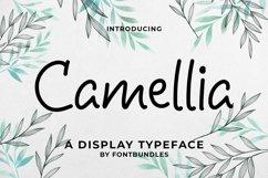 Camellia Product Image 1