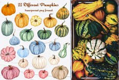 Amazing Pumpkins Watercolor Set Product Image 2
