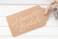 Fairy Lavender Monoline Handdraw Font Product Image 3