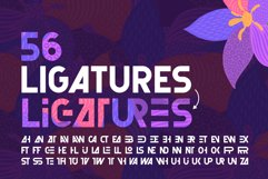 Florry font & illustrations Product Image 6