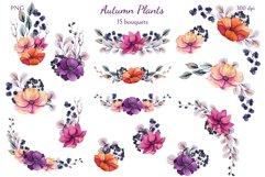 Autumn Plants Product Image 4