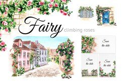 Fairy climbing roses Product Image 1