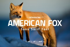 American Fox Font Product Image 1