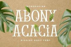 Web Font Abony Acacia Font Product Image 1