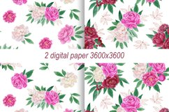 Watercolor peonies.Floral clipart.Pink,burgundy,white peony Product Image 3