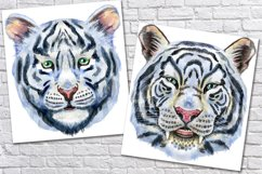 Watercolor tiger portraits Product Image 4