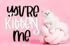 Web Font Catitude - A sassy cat font Product Image 3