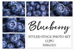 Blueberry. Styled stock photo set. Product Image 1