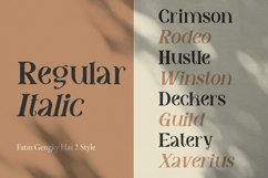 Fatin Gengky - Casual Serif Font Product Image 3