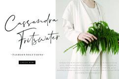 Dalmatins // Elegant Signature Font Product Image 3