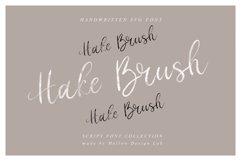 Hake Brush Product Image 1