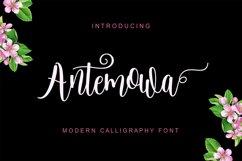 Antemowa Product Image 1