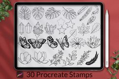 30 Decorative Procreate Stamps Product Image 1