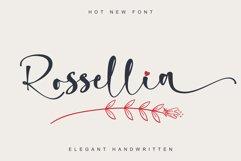 Rossellia Product Image 1