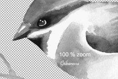 Birds. Watercolor set Product Image 2