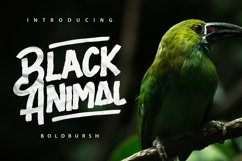 Black Animal Product Image 1