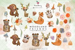 Woodland Forest Animal illustration Clipart| Drawberry CP022 Product Image 3