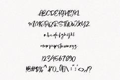 Aliters - Brush Font Product Image 6