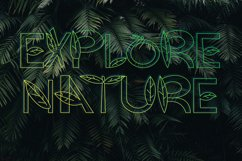 Plant Zumby| A Display Typeface Product Image 4