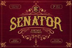 SENATOR Product Image 1