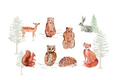 Forest Animals Clipart, Woodland Creatures, Fox, Bear, Owl Product Image 2