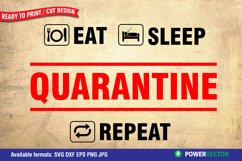 Funny Quarantine Sayings SVG DXF EPS PNG Design Product Image 2