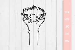 Cute Ostrich Svg File Product Image 1
