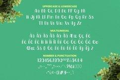 Web Font Savage Font Product Image 5
