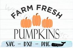 Farm Fresh Pumpkins - Fall, Thanksgiving, Autumn, Halloween Product Image 2