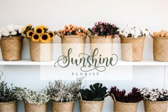 Loveliest Calligraphy Font Product Image 14