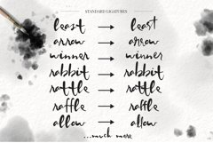 Worthy Story Script Font Product Image 4