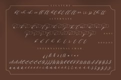 Endless Loveness Beauty Calligraphy Product Image 6