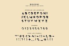Boldini. SVG font family Product Image 5