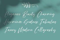 Mildlight Feminine Signature Font Product Image 6