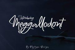 Meggallodont Product Image 1
