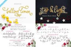 Best Seller Calligraphy Font Bundle Product Image 9