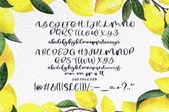 Lemon Summer Font Duo Product Image 5