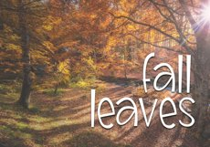 Scarecrow - A Handwritten Font Product Image 5