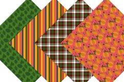 Pumpkin Digital Paper Product Image 5
