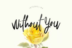 Without You Typeface Product Image 1