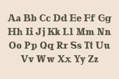 Yahya Slab Serif Font Family Product Image 2