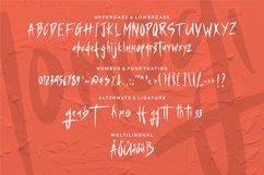 Momogi   A Handwritten Asian Font Product Image 5