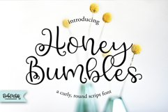 Silky Smooth Font Bundle Product Image 5