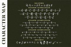 Derlinata Space - Beautiful Script Font Product Image 3