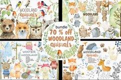 70 off. Bundle. Woodland animals. Product Image 1